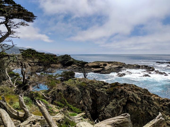 Lungo la costa centrale della California: Point Lobos State Natural Reserve e Carmel by theSea